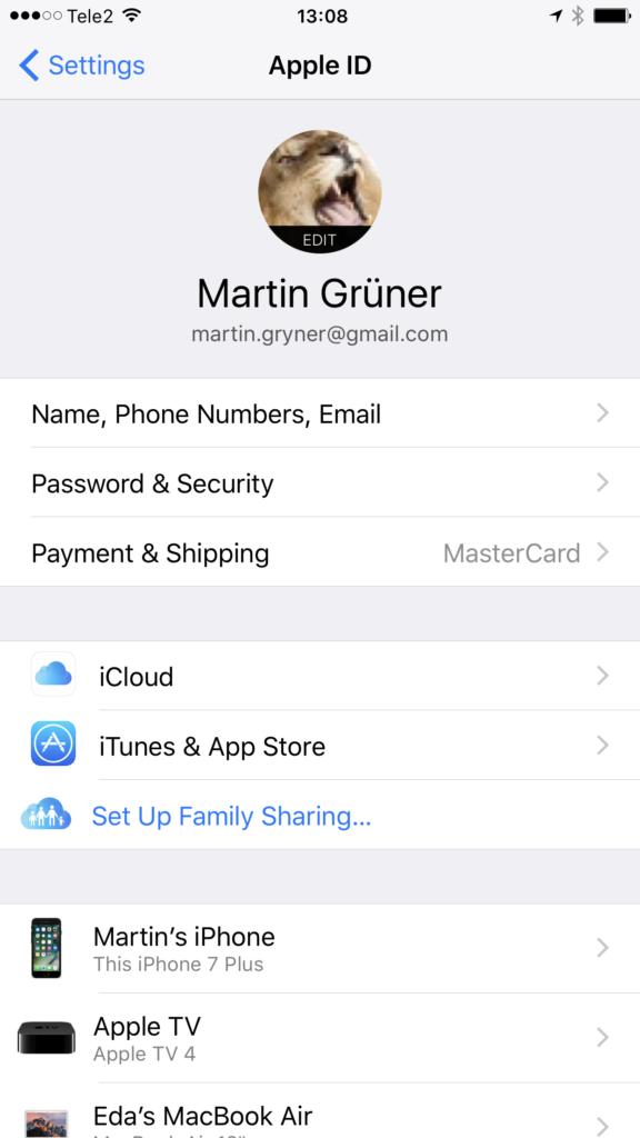 iCloud kasutaja vaade iOS seadetes